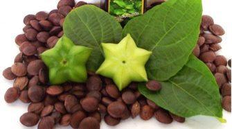 peruvian sacha inchi seeds